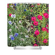 Cedar Park Texas Natural Tapestry Shower Curtain