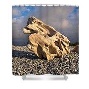 Naturally Sculpted Waterworn Wood On Pebble Beach Shower Curtain