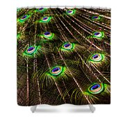 Nature Abstracts Shower Curtain
