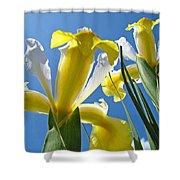 Nature Art Prints Yellow White Irises Flowers Shower Curtain
