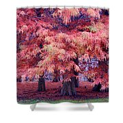 Nature Colors Shower Curtain