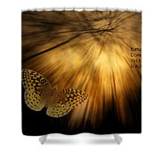 Nature Does Not Hurry Follow The Light Shower Curtain