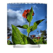 Nature Does Not Hurry Zinnia Standing Tall Shower Curtain