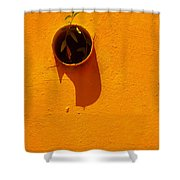Nature Don't Stop Limited Edition 1 Of 1 Shower Curtain