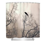 Nature Raven Crow Trees - Surreal Fantasy Gothic Nature Raven Crow In Trees Sepia Print Decor Shower Curtain