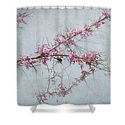 Nature Nurtures Shower Curtain