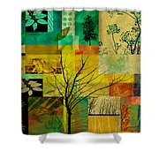 Nature Patchwork Shower Curtain by Ann Powell