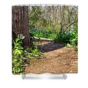 Nature Path Shower Curtain