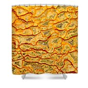 Nature Pattern Iron Oxide Mineral Sediment Crust Shower Curtain