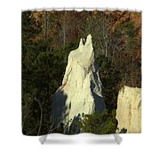 Nature Perfect Carving Shower Curtain