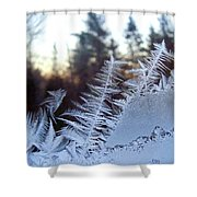 Nature Repeats Itself Shower Curtain