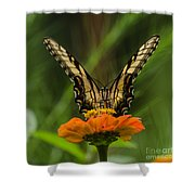 Nature Stain Glass Shower Curtain