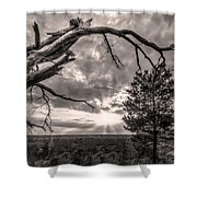Natures Arch Shower Curtain
