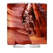 Natures Art Shower Curtain