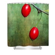 Nature's Baubles Shower Curtain