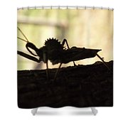 Natures Beast Shower Curtain
