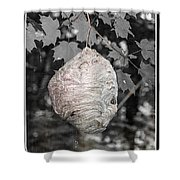 Natures Bee Hive Shower Curtain