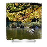 Natures Bliss Shower Curtain