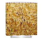 Natures Congestion Shower Curtain