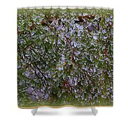 Natures Crystals Shower Curtain