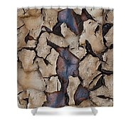 Natures Design Shower Curtain