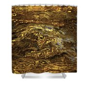 Natures Fresh Water Fountain Shower Curtain