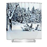 Natures Handywork - Snow Storm - Snow - Trees 2 Shower Curtain
