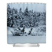 Natures Handywork - Snowstorm - Snow - Trees Shower Curtain