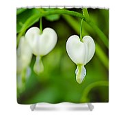 Nature's Hearts Shower Curtain