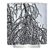 Natures Ice Sketch Abstract Shower Curtain