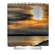 Natures Melody  Shower Curtain