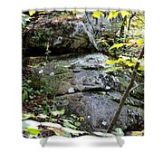 Nature's Mossy Boulders Shower Curtain