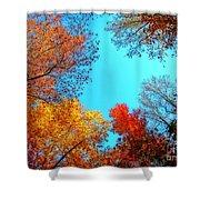 Nature's Pallete 1 Shower Curtain