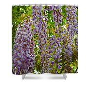 Natures Perfume Shower Curtain