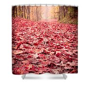 Nature's Red Carpet Revisited Shower Curtain
