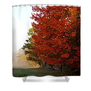 Nature's Red Highlights Shower Curtain