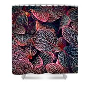 Nature's Rich Tapestry Shower Curtain