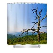 Nature's Sculpture Shower Curtain