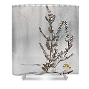 Natures Snow Coat Shower Curtain