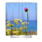 Natures Song Shower Curtain by Lynn Bauer