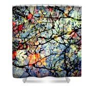 Natures Stained Glass Shower Curtain by Karen Wiles