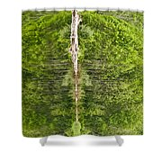 Natures Totem Shower Curtain