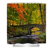 Natures Way Shower Curtain by Susan Candelario