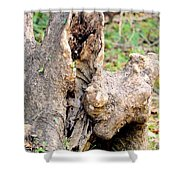 Nature's Wood Abstract Shower Curtain