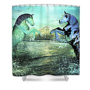 Nautical Treasures Shower Curtain