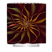 Nautilus Fractalus Tropical Shower Curtain