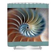 Nautilus Impression Shower Curtain