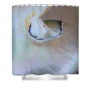 Nautilus Sea Shell Shower Curtain
