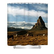 Navajo Horses At El Capitan Shower Curtain