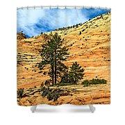 Navajo Sandstone Shower Curtain